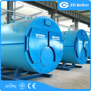 WNS Gas fired hot water boiler